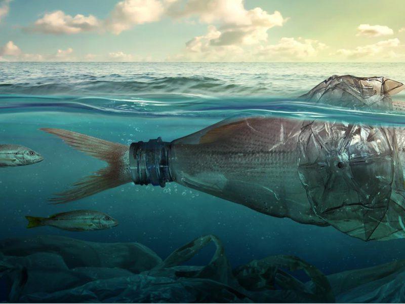 GO4SEA Save the Sea