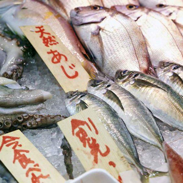 Sushi al Tsukij Fish Market, Tokyo